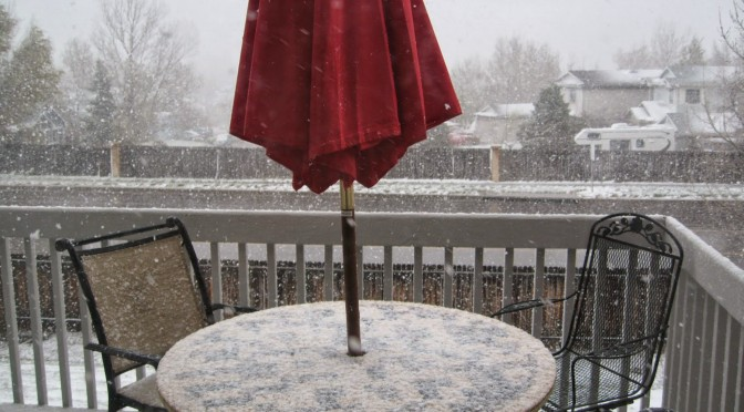 It's Snowing. Seriously. In April. (T-129)