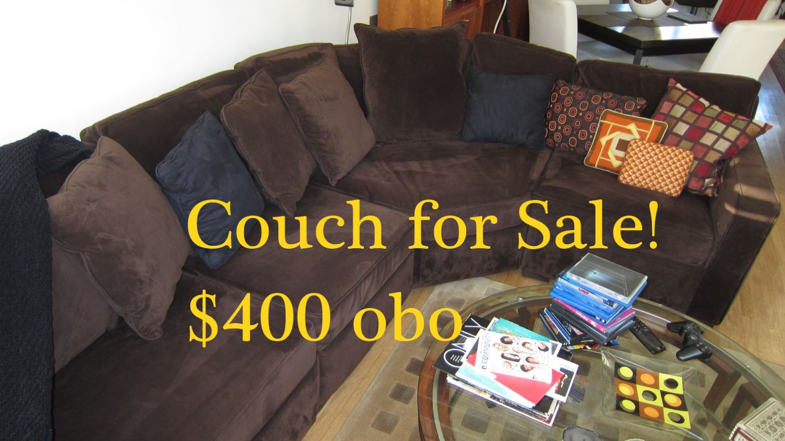 Great Couch Looking for a New Home