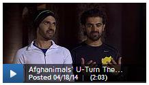 AR24_Ep8_afghanimalsuturntheories