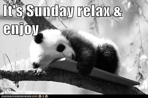 Sunday in November